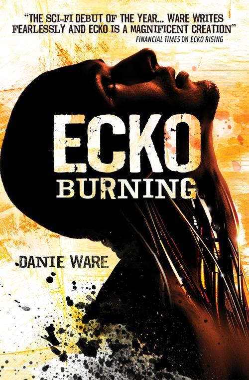 ecko_burning