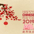 Chinese New Year 2019: Saying Hello to the Year of the Pig with Crossroads of Heroes