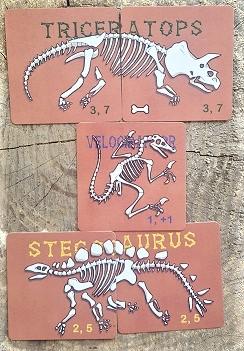 Dino Dig Dinosaurs
